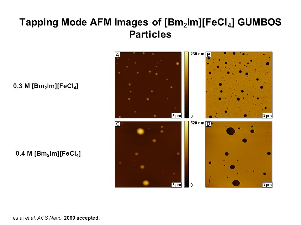 Tapping Mode AFM Images of [Bm2Im][FeCl4] GUMBOS Particles